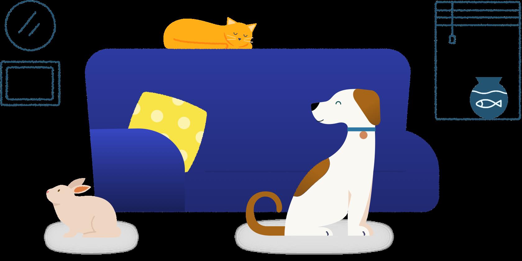 Goodrx Prescription Discounts For Pets